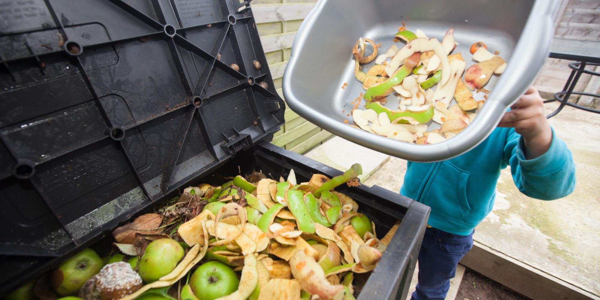Способы утилизации пищевых отходов