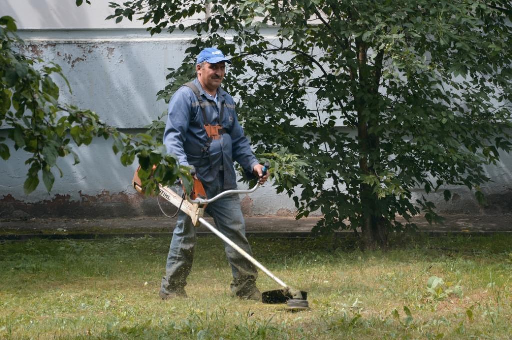 Регулярное скашивание газонов